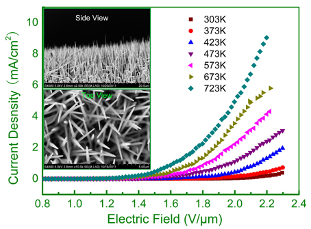"Junqi Xu et al. NPG Asia Materials.""Fabrication of Vertically Aligned Single-crystalline Lanthanum Hexaboride Nanowire Arrays and Investigation of Their Field Emission."""