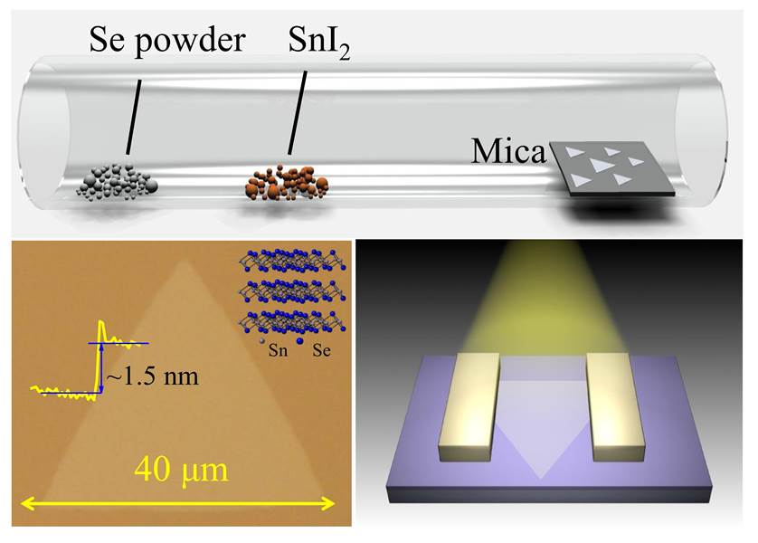 "Xing Zhou et al Adv. Mater.""Ultrathin SnSe2 Flakes Grown by Chemical Vapor Deposition for High Performance Photodetectors."""